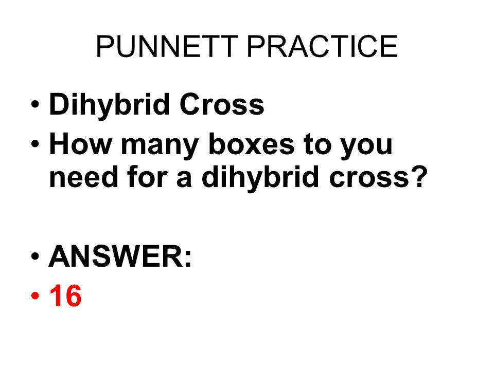 PUNNETT PRACTICE Dihybrid Cross How many boxes to you need for a dihybrid cross? ANSWER: 16