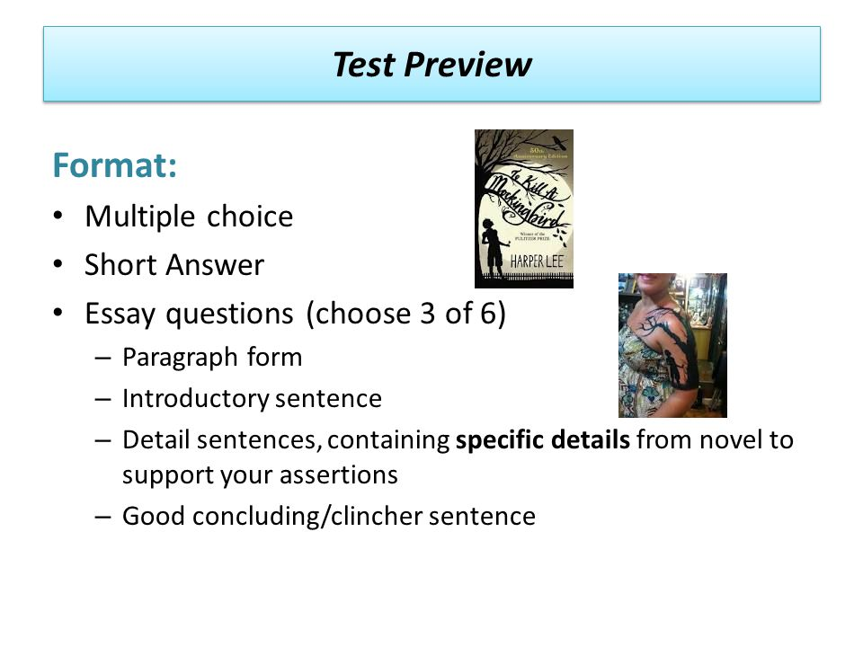 Test Preview Format: Multiple choice Short Answer Essay questions (choose 3 of 6) – Paragraph form – Introductory sentence – Detail sentences, containing specific details from novel to support your assertions – Good concluding/clincher sentence