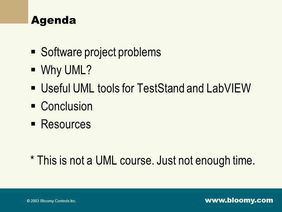 www.bloomy.com © 2003 Bloomy Controls Inc.Agenda Software project problems Why UML.