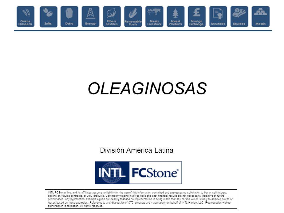 OLEAGINOSAS División América Latina