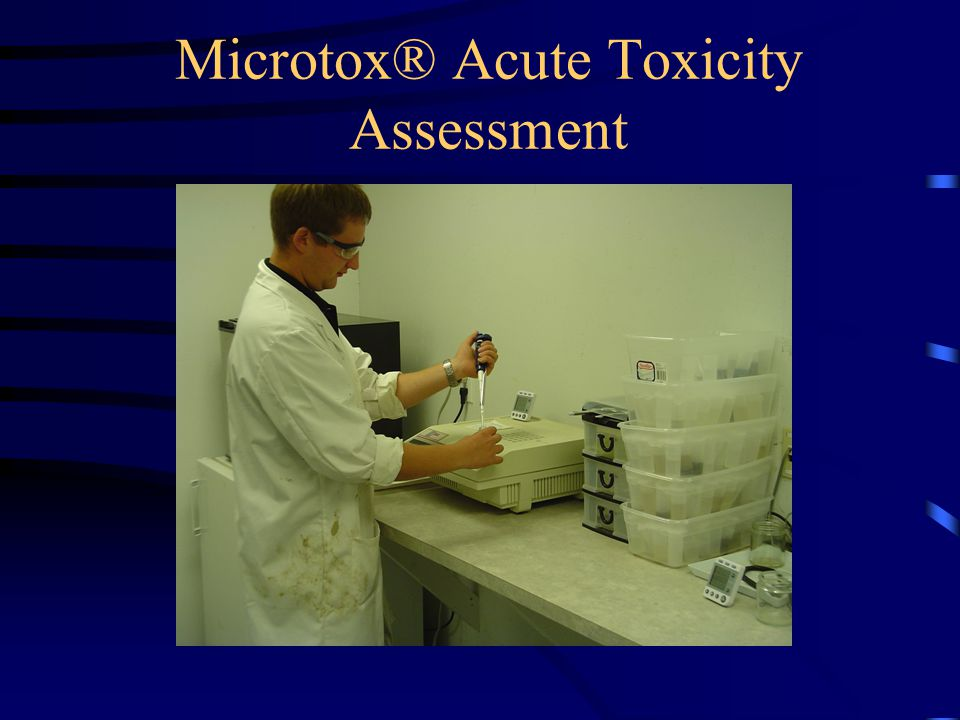 Microtox® Acute Toxicity Assessment