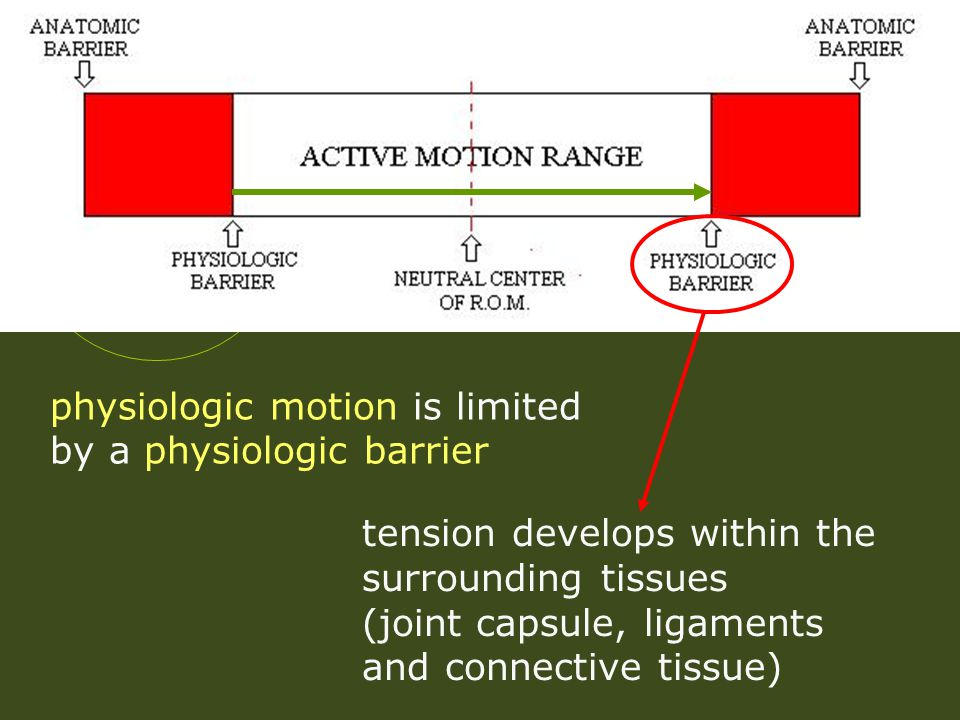physiologic motion is limited by a physiologic barrier tension develops within the surrounding tissues (joint capsule, ligaments and connective tissue