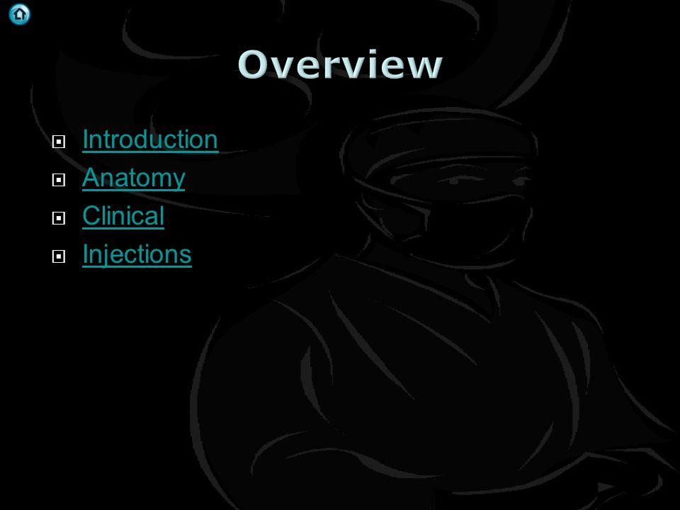 Cervical Spine Thoracic Spine Neck Examination Cardiac Disease