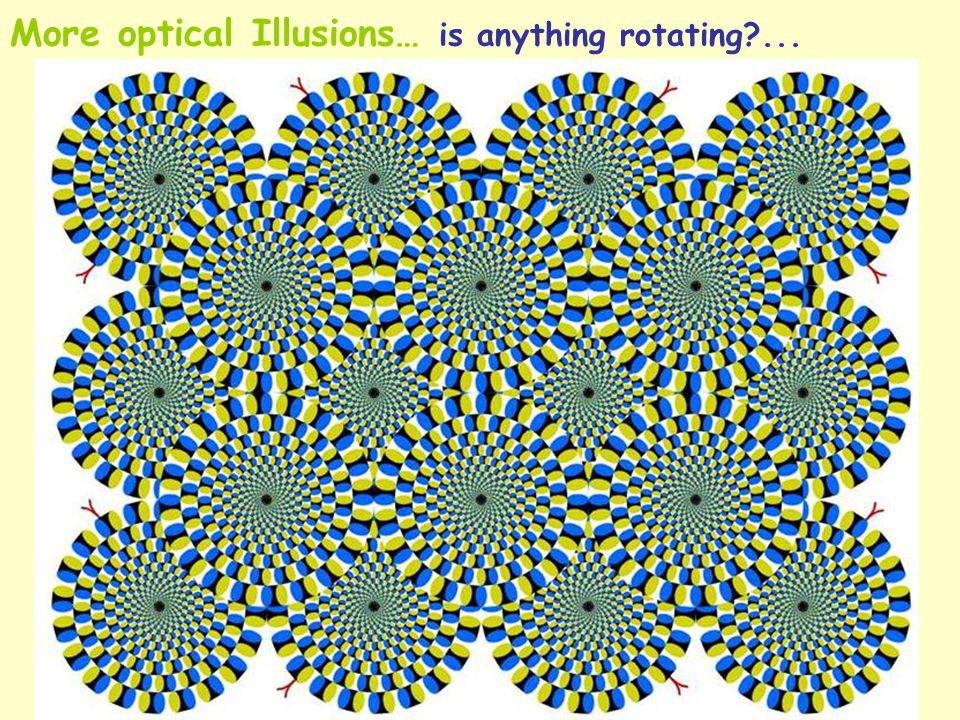 More optical Illusions… is anything rotating?...