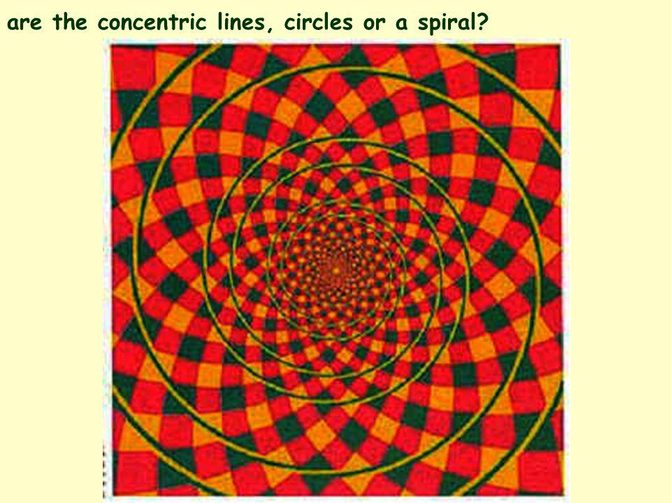 are the concentric lines, circles or a spiral?
