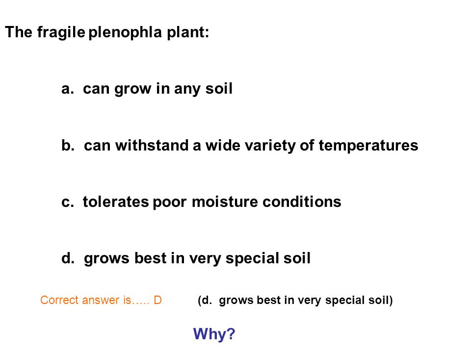 The fragile plenophla plant: a. can grow in any soil b.