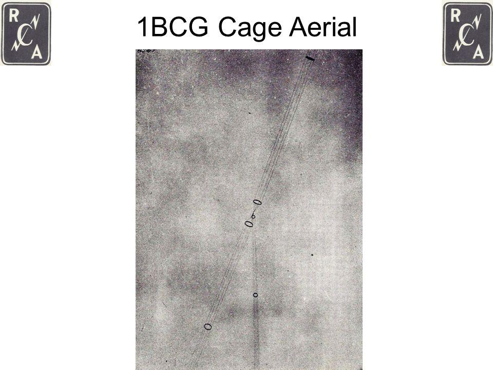 1BCG Cage Aerial