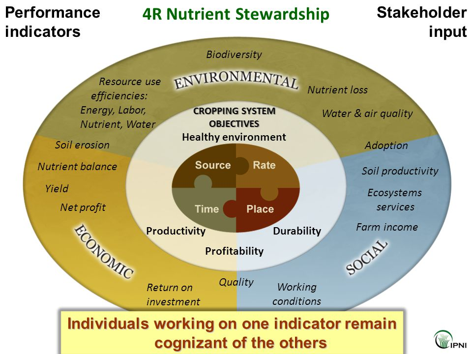 Healthy environment Productivity Profitability Durability CROPPING SYSTEM OBJECTIVES Net profit Resource use efficiencies: Energy, Labor, Nutrient, Wa