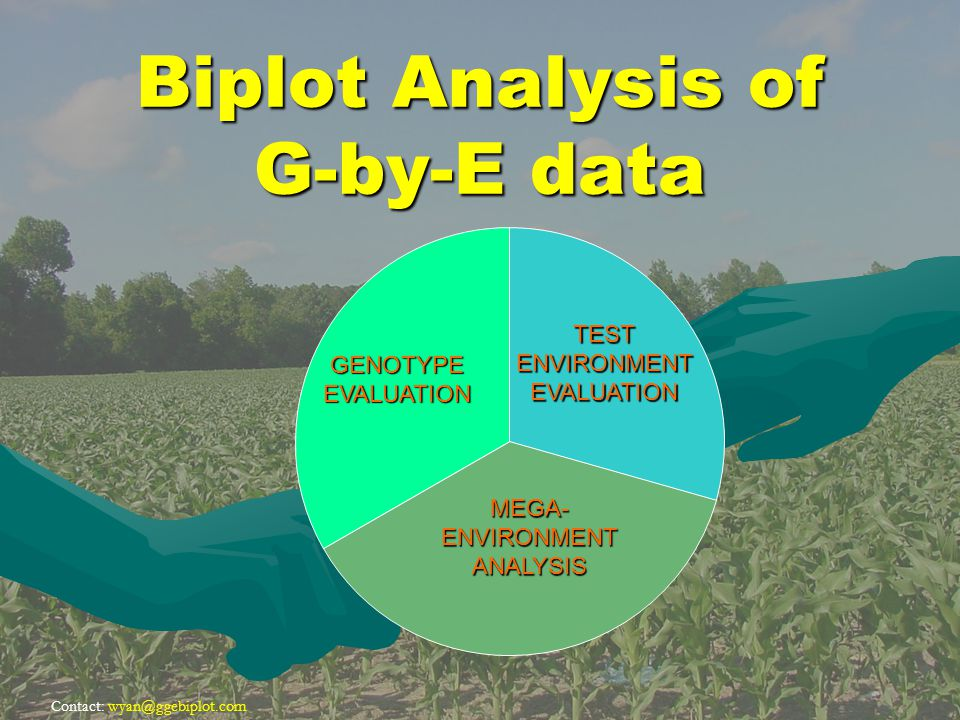 Contact: wyan@ggebiplot.com Biplot Analysis of G-by-E data MEGA- ENVIRONMENT ANALYSIS TESTENVIRONMENTEVALUATION GENOTYPEEVALUATION