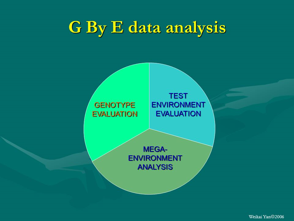 Weikai Yan 2006 G By E data analysis MEGA- ENVIRONMENT ANALYSIS TESTENVIRONMENTEVALUATION GENOTYPEEVALUATION