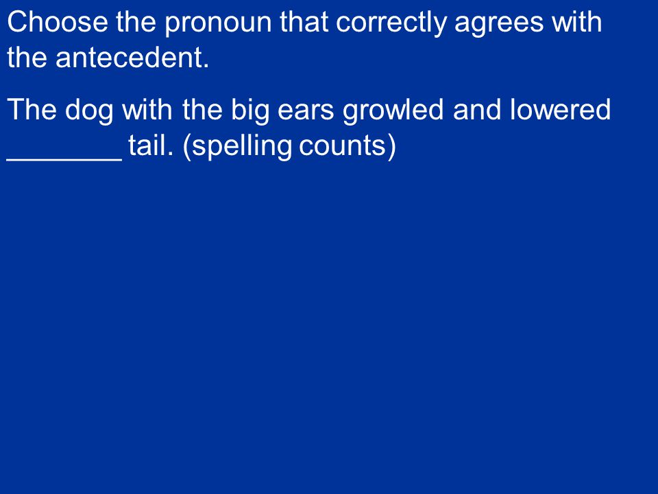 Choose the pronoun that correctly agrees with the antecedent.