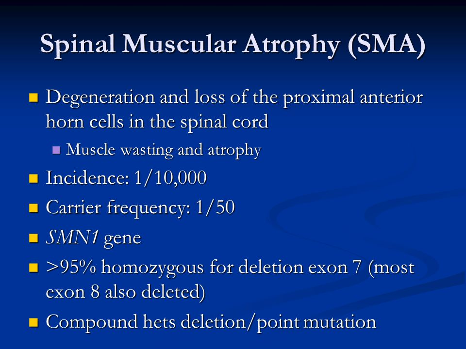 Spinal Muscular Atrophy (SMA) Degeneration and loss of the proximal anterior horn cells in the spinal cord Degeneration and loss of the proximal anterior horn cells in the spinal cord Muscle wasting and atrophy Muscle wasting and atrophy Incidence: 1/10,000 Incidence: 1/10,000 Carrier frequency: 1/50 Carrier frequency: 1/50 SMN1 gene SMN1 gene >95% homozygous for deletion exon 7 (most exon 8 also deleted) >95% homozygous for deletion exon 7 (most exon 8 also deleted) Compound hets deletion/point mutation Compound hets deletion/point mutation