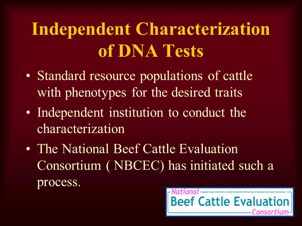 Independent Characterization of DNA Tests Standard resource populations of cattle with phenotypes for the desired traits Independent institution to conduct the characterization The National Beef Cattle Evaluation Consortium ( NBCEC) has initiated such a process.