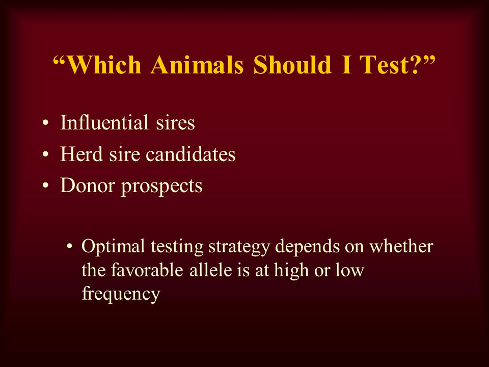 Which Animals Should I Test.