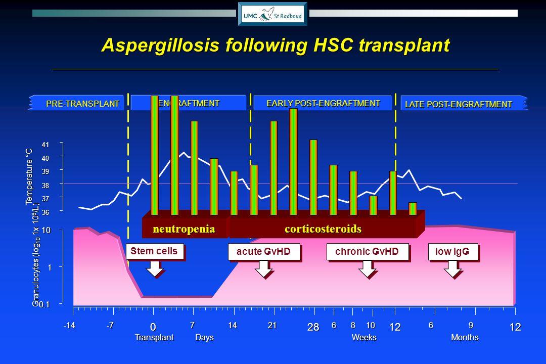 Aspergillosis following HSC transplant Granulocytes (log 10 1x 10 6 /L) 0.1 1 10 36 37 38 39 40 41 Temperature °C DaysMonths-7071421126912-14628810Wee