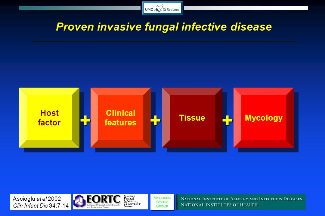Proven invasive fungal infective disease Host factor Clinical features+ Tissue+ Mycology+ Invasive Fungal Infections Cooperative GroupMycosesStudyGrou