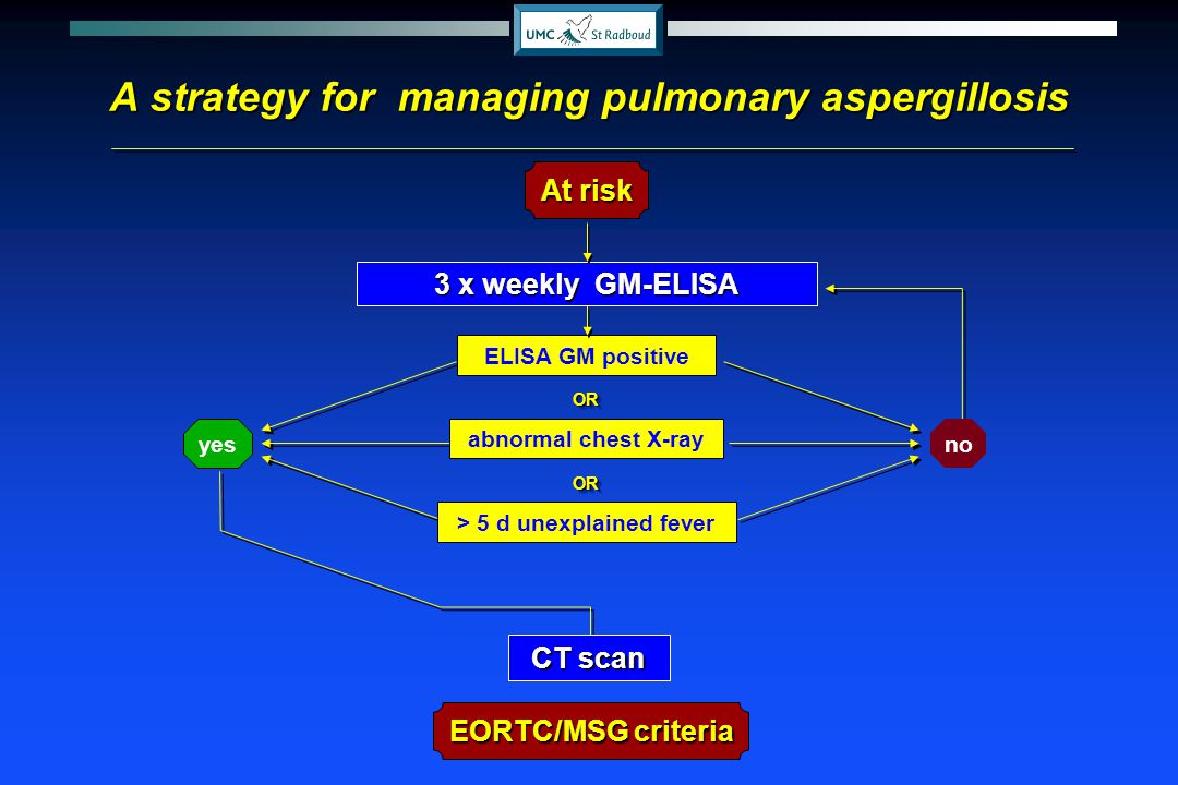 CT scan At risk 3 x weekly GM-ELISA yes no ELISA GM positive OROR > 5 d unexplained fever OROR abnormal chest X-ray EORTC/MSG criteria A strategy for