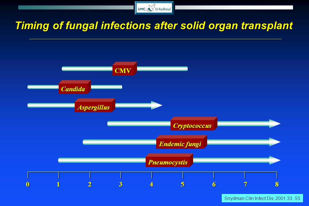 Incidence of fatal fungal infections amongst patients other than those with HIV in the USA Mc Neil et al 2001 Clin Infect Dis 33;641 Candidiasis Aspergillosis
