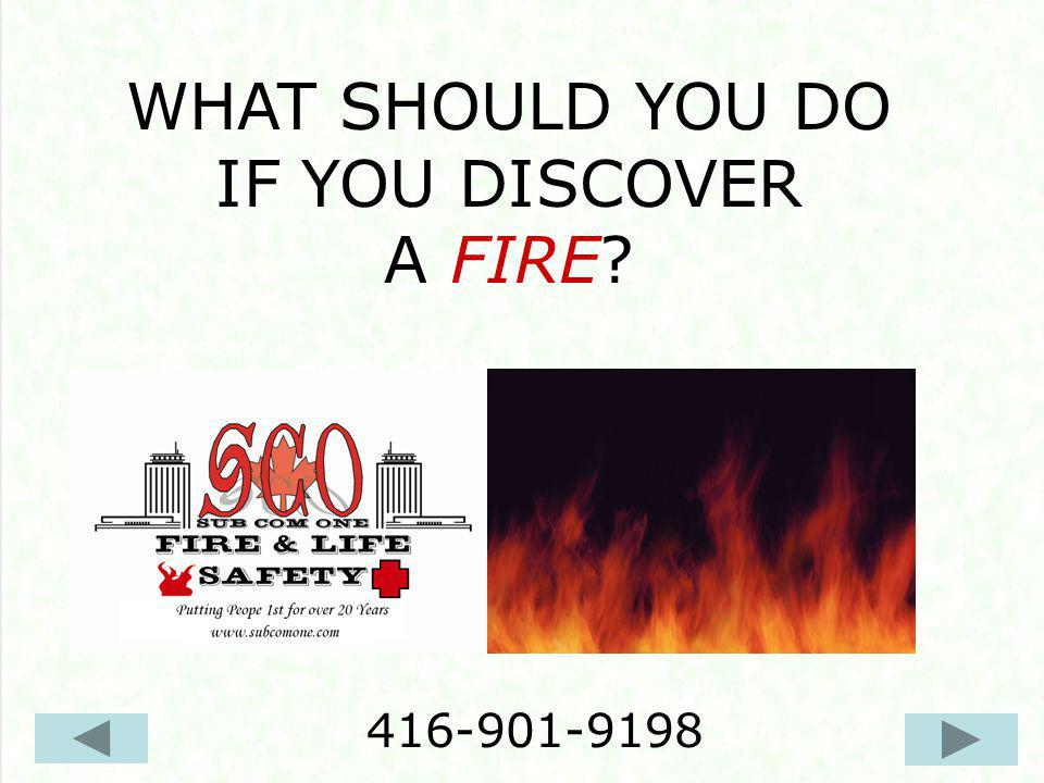 Pull the nearest Fire Alarm OR Tell a co-worker to pull it! STEP ONE 416-901-9198