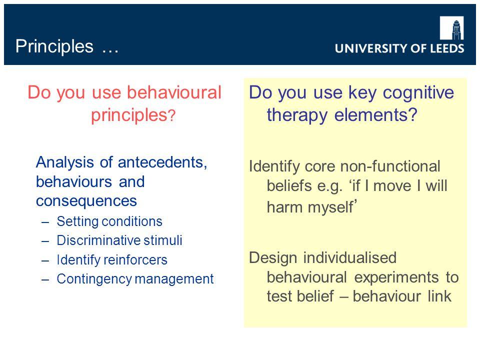 Principles … Do you use behavioural principles .