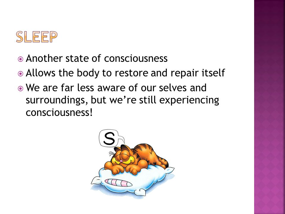 Another state of consciousness Allows the body to restore and repair itself We are far less aware of our selves and surroundings, but were still exper