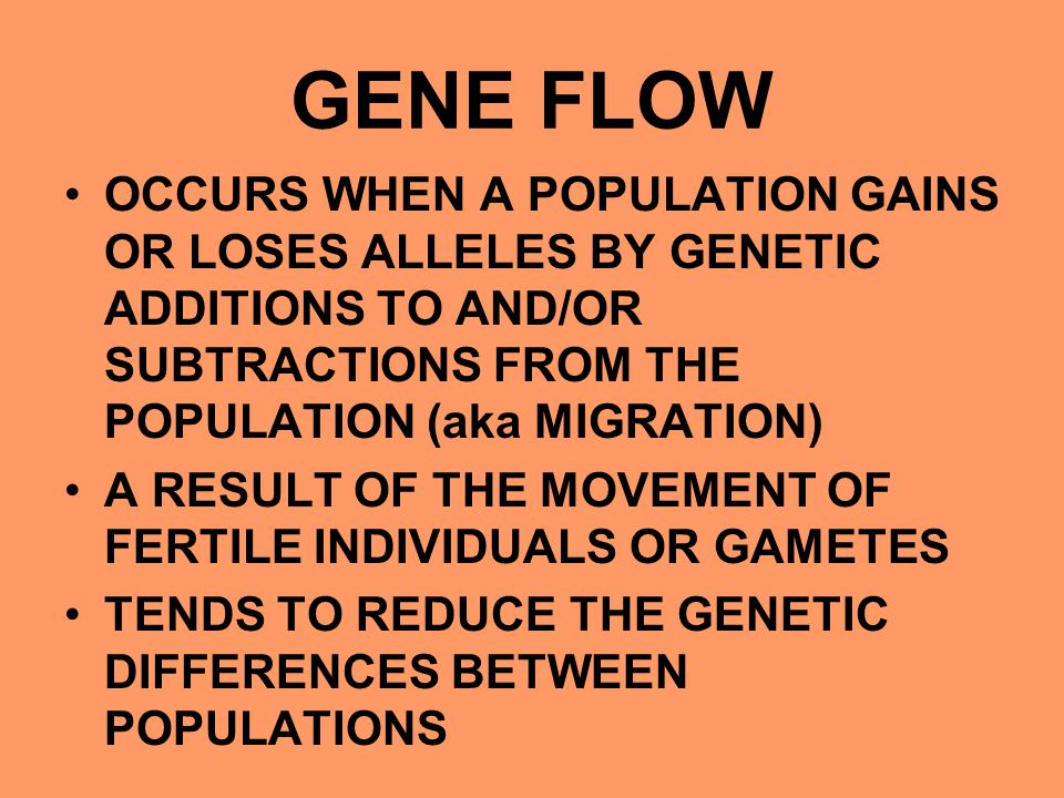 GENE FLOW OCCURS WHEN A POPULATION GAINS OR LOSES ALLELES BY GENETIC ADDITIONS TO AND/OR SUBTRACTIONS FROM THE POPULATION (aka MIGRATION) A RESULT OF