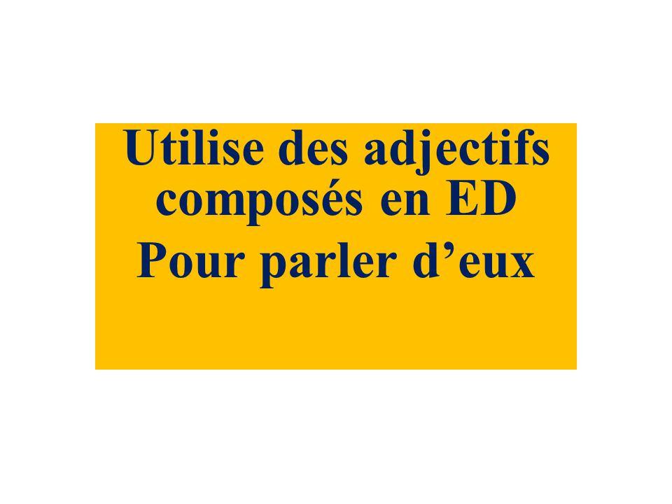Utilise des adjectifs composés en ED Pour parler deux