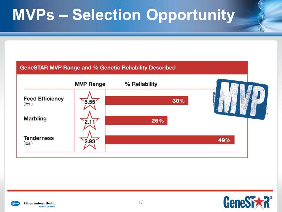 13 MVPs – Selection Opportunity
