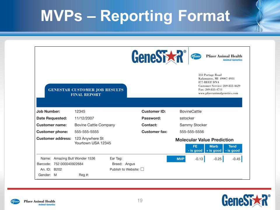 19 MVPs – Reporting Format