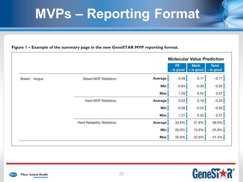 20 MVPs – Reporting Format