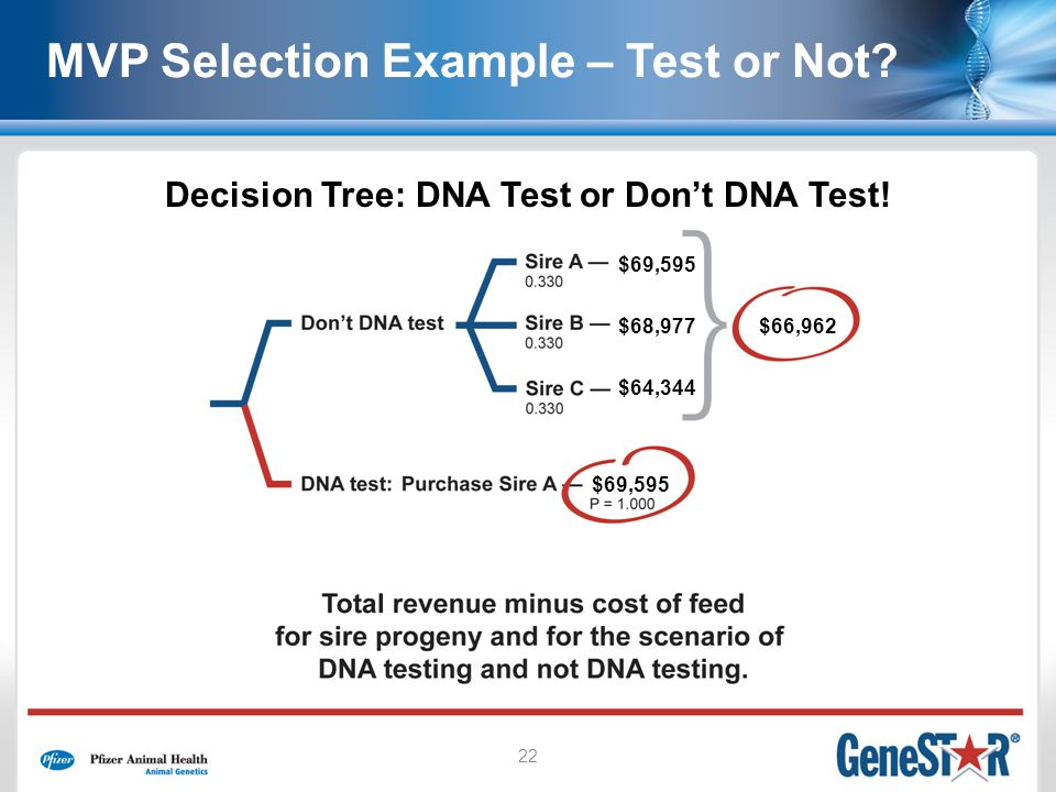 22 Decision Tree: DNA Test or Dont DNA Test! $69,595 $68,977 $64,344 $66,962 $69,595 MVP Selection Example – Test or Not?