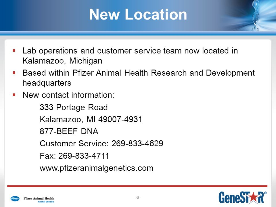 30 New Location Lab operations and customer service team now located in Kalamazoo, Michigan Based within Pfizer Animal Health Research and Development headquarters New contact information: 333 Portage Road Kalamazoo, MI 49007-4931 877-BEEF DNA Customer Service: 269-833-4629 Fax: 269-833-4711 www.pfizeranimalgenetics.com