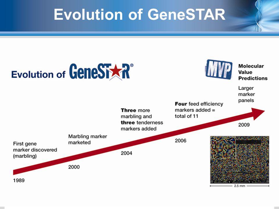 4 Evolution of GeneSTAR