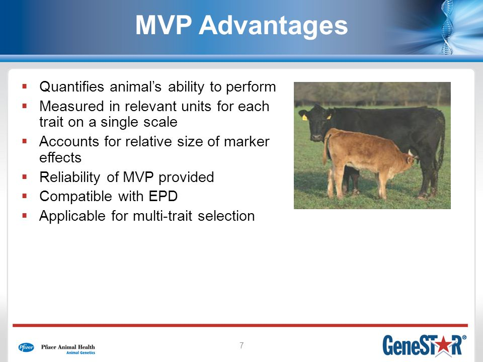 7 MVP Advantages Quantifies animals ability to perform Measured in relevant units for each trait on a single scale Accounts for relative size of marke