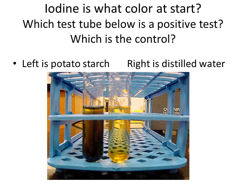 Iodine is what color at start? Which test tube below is a positive test? Which is the control? Left is potato starch Right is distilled water