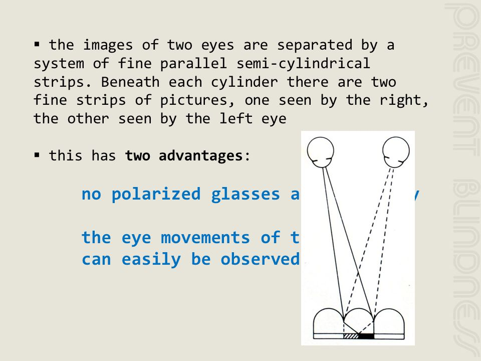 the images of two eyes are separated by a system of fine parallel semi-cylindrical strips. Beneath each cylinder there are two fine strips of pictures