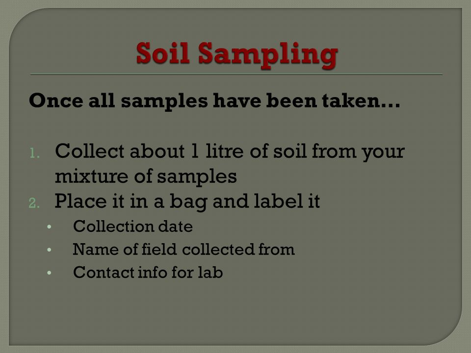 Once all samples have been taken… 1. Collect about 1 litre of soil from your mixture of samples 2. Place it in a bag and label it Collection date Name
