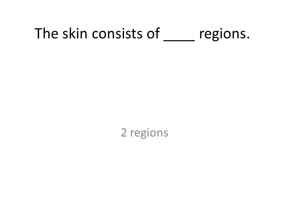 The skin consists of ____ regions. 2 regions