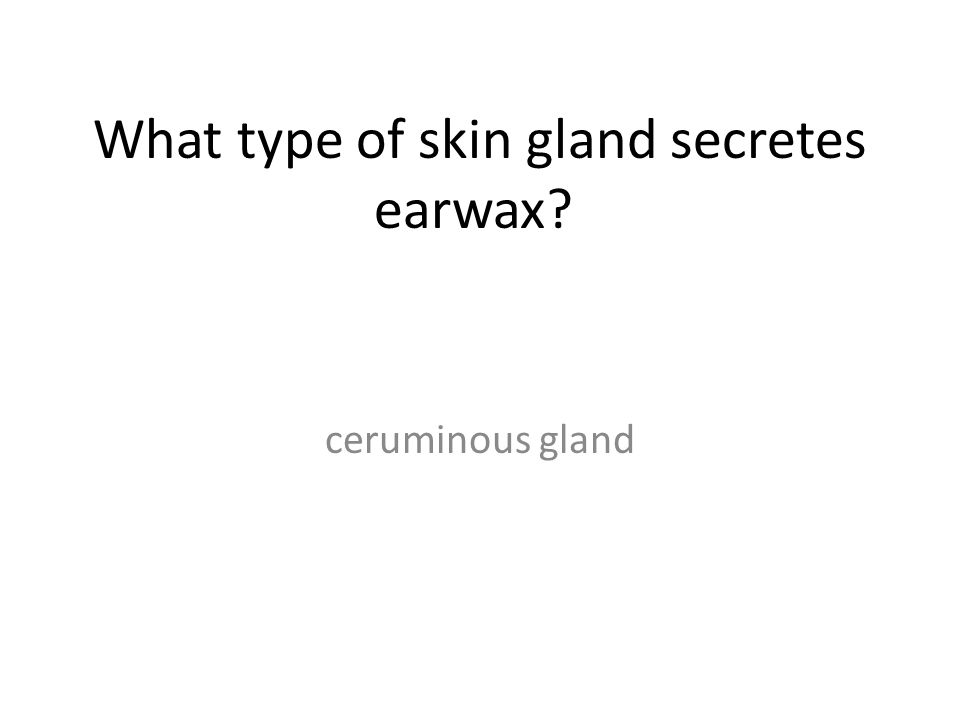 What type of skin gland secretes earwax? ceruminous gland
