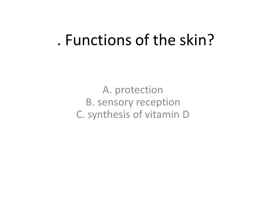 . Functions of the skin? A. protection B. sensory reception C. synthesis of vitamin D