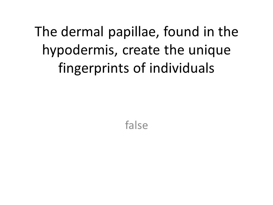 The dermal papillae, found in the hypodermis, create the unique fingerprints of individuals false