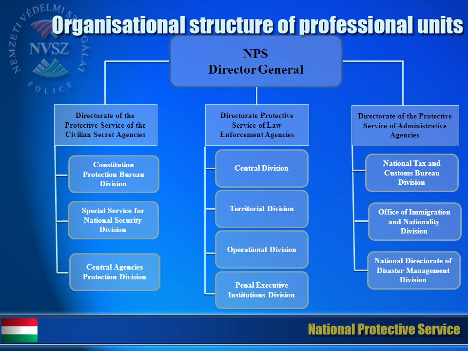 NPS Director General Directorate of the Protective Service of the Civilian Secret Agencies Directorate Protective Service of Law Enforcement Agencies Directorate of the Protective Service of Administrative Agencies Constitution Protection Bureau Division Special Service for National Security Division Central Agencies Protection Division Operational Division Central Division Penal Executive Institutions Division Territorial Division Office of Immigration and Nationality Division National Tax and Customs Bureau Division National Directorate of Disaster Management Division