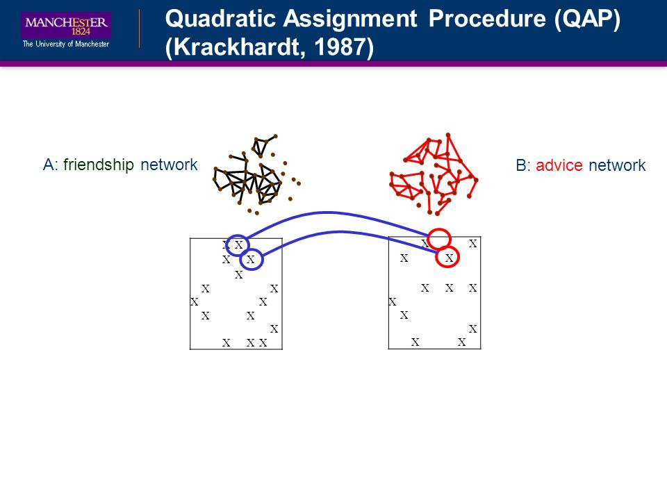 Quadratic Assignment Procedure (QAP) (Krackhardt, 1987) B: advice network A: friendship network XX XX X XX XX XX X XXX XX XX XXX X X X XX