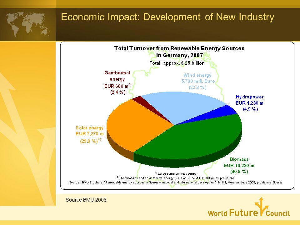 Economic Impact: Development of New Industry Source BMU 2008