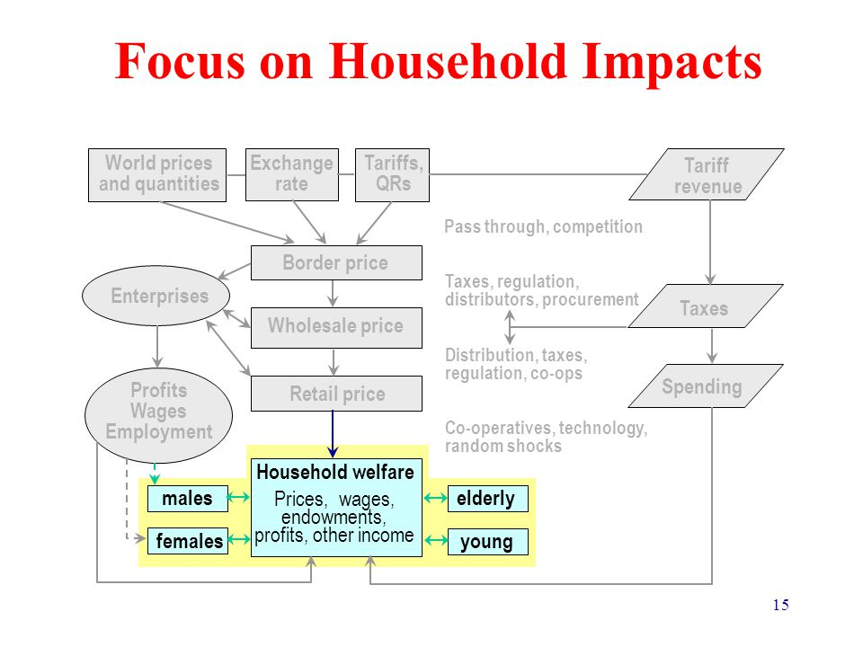 15 Focus on Household Impacts Trade Policy and Poverty – Causal Connections Pass through, competition Taxes, regulation, distributors, procurement Distribution, taxes, regulation, co-ops Co-operatives, technology, random shocks World prices and quantities Border price Wholesale price Tariffs, QRs Retail price Exchange rate Household welfare Prices, wages, endowments, profits, other income elderly young males females Enterprises Profits Wages Employment Tariff revenue Taxes Spending