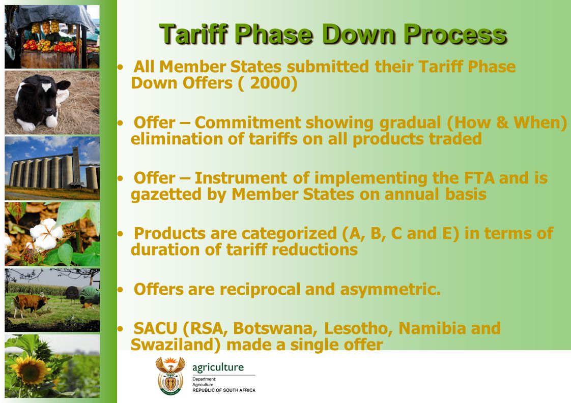 Tariff Phase Down Process All Member States submitted their Tariff Phase Down Offers ( 2000) Offer – Commitment showing gradual (How & When) eliminati