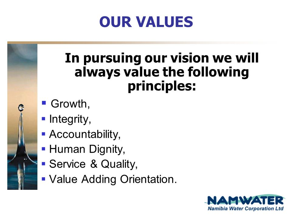 OUR VALUES In pursuing our vision we will always value the following principles: Growth, Integrity, Accountability, Human Dignity, Service & Quality,