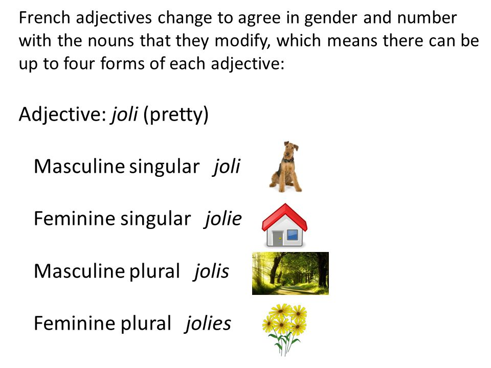 French adjectives change to agree in gender and number with the nouns that they modify, which means there can be up to four forms of each adjective: Adjective: joli (pretty) Masculine singular joli Feminine singular jolie Masculine plural jolis Feminine plural jolies