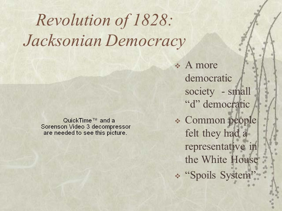 Revolution of 1828: Jacksonian Democracy A more democratic society - small d democratic Common people felt they had a representative in the White Hous