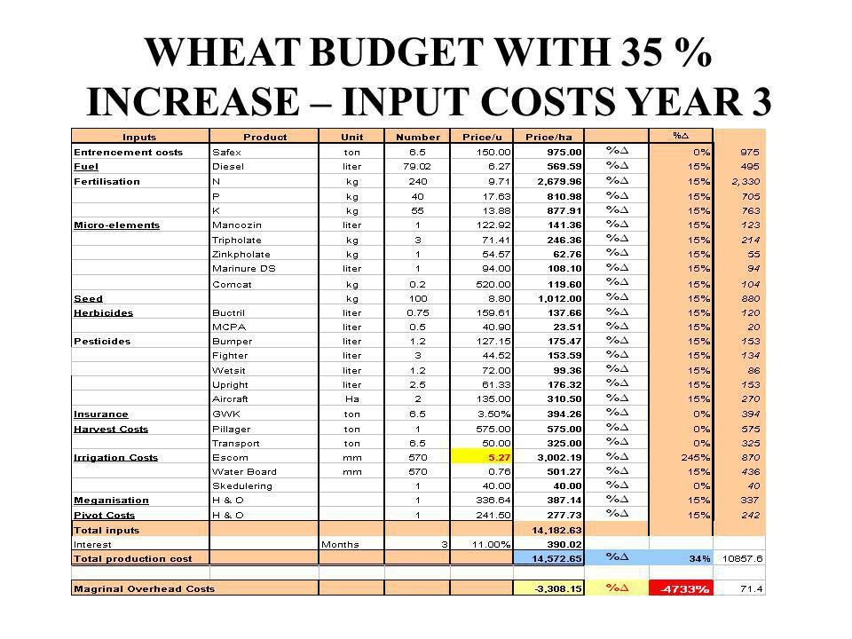 WHEAT BUDGET WITH 35 % INCREASE – INPUT COSTS YEAR 3